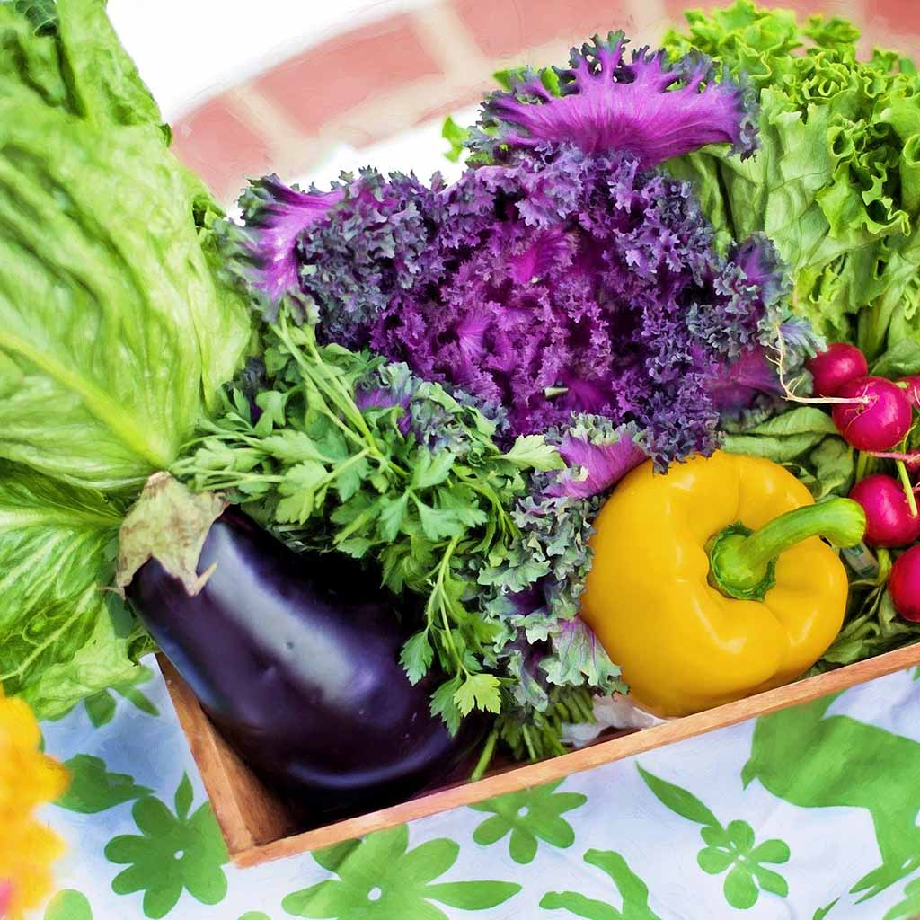Organic Foods are free of pesticides and harmful chemicals