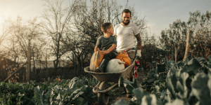 How is organic farming done?